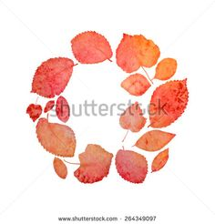 Watercolor painted autumn leaves. Vector illustration.