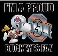 I love the ohio state buckeyes. they are awesome!I am a buckeyes fan and I am proud of it.