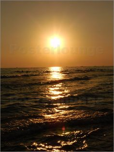Wonderful Dream Picture - Sonnenuntergang mit Meer #poster #sun #sunset #love #gift #nature #landscape #sea #lake #picture #photo #zazzle #posterlounge #cafepress #orchid #purple #flower #bloom #plant #macro