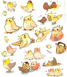 new ideas for cute bird drawing kawaii Cute Animal Drawings, Animal Sketches, Bird Drawings, Kawaii Drawings, Cute Drawings, Funny Birds, Cute Birds, Cockatiel, Budgies