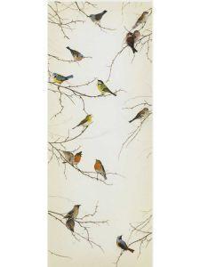 birds 49.95 single roll