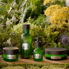 31 Best Anti Aging Skincare Images In 2019 The Body Shop Anti