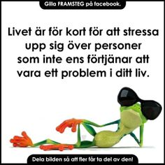 Livet på hundskola o kennel. Wise Quotes, Daily Quotes, Motivational Quotes, Learn Swedish, Swedish Language, Life Advice, Note To Self, True Words, Feel Good