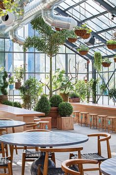 Renegade chef Roy Choi turns out to be a flower child. Take a look at his roof-deck restaurant at LA& Line Hotel, communal potting tables included. Serre Restaurant, Greenhouse Restaurant, Greenhouse Cafe, Bar Restaurant, Restaurant Design, Greenhouse Plants, Rustic Restaurant, Restaurant Interiors, Greenhouse Ideas