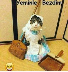Maasta yok bedava hizmetcilik 🤣 Funny Cats, Funny Jokes, Hilarious, Animals And Pets, Funny Animals, Funny Happy, Betty Boop, Cringe, Animation