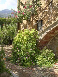 Biodynamics Sicily