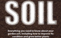 Soil is pretty important. After all, you would not have any plants without it. But it's a complicated being.  It's made up of loads of different materials, including rock and mineral particles,
