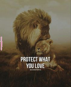 Relationship Goals leo and leo relationship Beautiful Cats, Animals Beautiful, Cute Animals, Lioness Quotes, Lion Couple, Lion Family, Lion Love, Lions In Love, Lion And Lioness