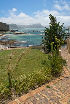 Are you ready to experience the beauty of the Western Cape of South Africa? Beautiful Places To Visit, Oh The Places You'll Go, African Holidays, Clifton Beach, South Afrika, Namibia, Cape Town South Africa, Out Of Africa, Rest Of The World