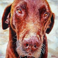 Watercolor commissioned memorial gift Memorial Gifts, Art World, Labrador Retriever, Watercolor, Dogs, Artist, Animals, Labrador Retrievers, Pen And Wash