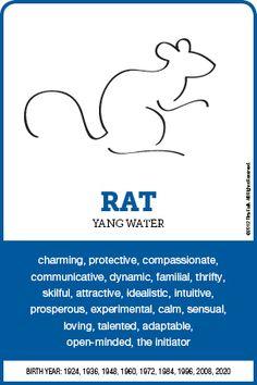 The RAT Personality – leo constellation tattoo Rat Zodiac, Zodiac Art, My Zodiac Sign, Astrology Zodiac, Sagittarius Traits, Zodiac Traits, Pisces, Chinese Zodiac Rat, Chinese Astrology