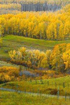 Dallas Divide Colorado   Autumn Pastel. II - Dallas Divide, Colorado « Igor Menaker Fine Art ...