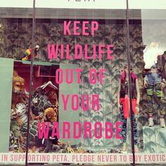 Topshop Fights To Keep Wildlife Out Of Your Wardrobe in collaboration with Peta #FashionPR