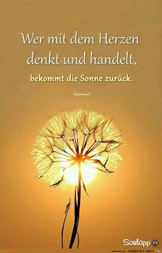 :) Sonne im Herzen. Danke Daizo☀ - - :] Sonne im Herzen. Motivational Quotes For Life, Positive Quotes, Life Quotes, Byron Katie, Valentines Day Messages, Golden Life, German Quotes, Romantic Poetry, Life Motivation