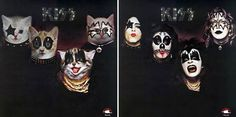 Artist uses kittens to recreate classic album covers. Another one...sorry! These are just too funny. #KISS