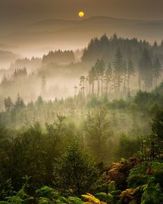 Autumn moves in (Dukes Pass, Trossachs, Scotland) by David Mould on 500px