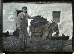 Old colour photos of Ireland in 1913 Taking the turf home.