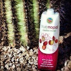 Cactus Water! True Nopal - truenopal.com -