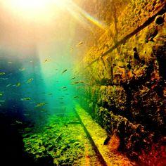Underwater slovenia piran gopro colours