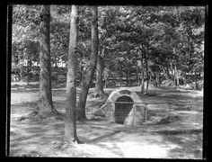 Spangler's Spring GETTYSBURG BATTLEFIELD PA 1899 Glass Plate Negative 13
