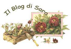 Il Blog di Sara