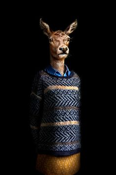 miguel vallinas adorns animals in apparel to reflect their human nature Photomontage, Photoshop, Affordable Art Fair, Real Model, Animal Heads, Human Nature, Pet Clothes, Fantasy Creatures, Pet Portraits