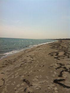 Marielyst beach