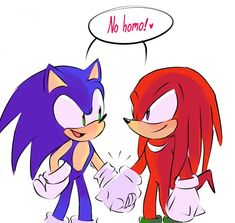 Sonic 3, Sonic Fan Art, Silver The Hedgehog, Sonic The Hedgehog, Sonic & Knuckles, Pokemon, Sonic Franchise, Sonic And Shadow, Echidna