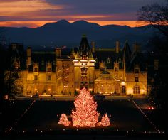 the grand biltmore house at sunset with the big christmas tree out front - Biltmore House Christmas