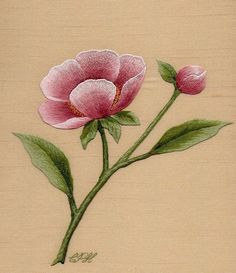 Broderie : Pivoine simple. Peinture à l'aiguille aux fils de soie Création et réalisation : Christiane Plamondon Hallé