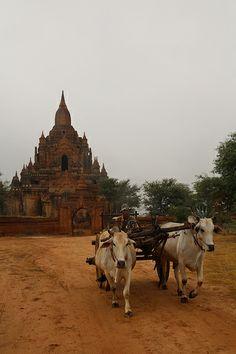 Nandamanya Temple, Bagan, Myanmar