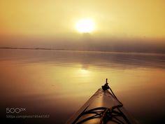 Kayaking in Newport Bay by hoganhansho