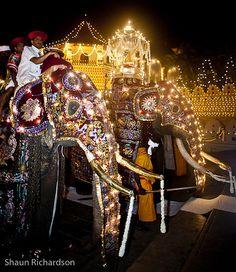 Esala Perahera night festival, Kandy, Sri Lanka (www.secretlanka.com)