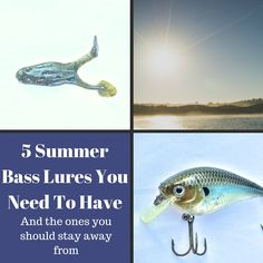 Summer Bass Fishing Lures 5 lures you should have for summer bass fishing.and a few you should stay away lures you should have for summer bass fishing.and a few you should stay away from. Australian Bass, Bass Fishing Lures, Catfish Fishing, Fishing Poles, Fishing Techniques, Fishing Tricks, Fishing Basics, Types Of Fish, Bass Boat