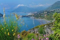 Bereits 300 v. Chr. soll Alexander der Große die Zitronatzitrone von seinem Feldzug durch Asien nach Europa mitgebracht haben. Im Norden Kalabriens, wo sie seit der Antike angebaut wird, ist sogar ein ganzer Küstenstreifen nach ihr benannt: die Riviera dei Cedri.