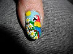 nail designs parrot - Google Search