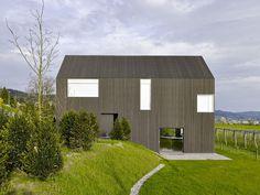 Жилой дом Gottshalden работы дизайнерского бюро Розетти+Висс