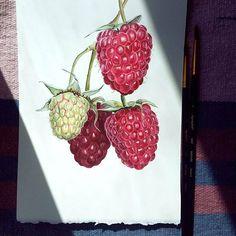 Думала, малина будет суровым испытанием моей любви к рисованию мелких деталей ) Но оказалось, все не так страшно