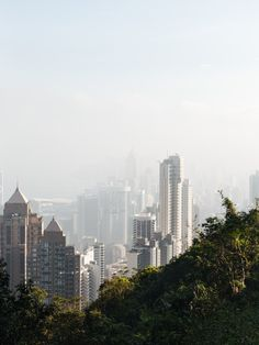 Hong Kong: What to do & what to see in weniger als 8 Stunden National Geographic, Empire, Hongkong, Seattle Skyline, San Francisco Skyline, Travel, Europe, Small Shops, Skyscrapers