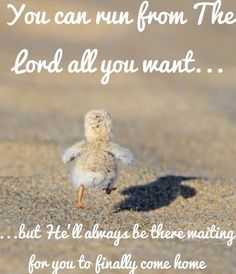 You can run from the Lord all you want... but He'll always be there waiting for you to finally come home. <3