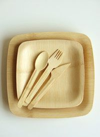 Disposable Bamboo Dinnerware  Make your next dinner party or picnic completely organic from the food to the plates and utensils. Made from certified organic bamboo, a renewable source, the Disposable Bamboo Plates & Utensils are an eco-friendly way to host parties of all varieties.