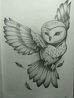 By Cari Espinosa. Owl drawing / sketch – You are in the right place about drawings beautiful Here we offer you the most beautiful pictures … Pencil Art Drawings, Art Drawings Sketches, Cute Drawings, Owl Drawings, Good Sketches, Cool Drawings Tumblr, Tattoo Drawings, Art Du Croquis, Amazing Drawings