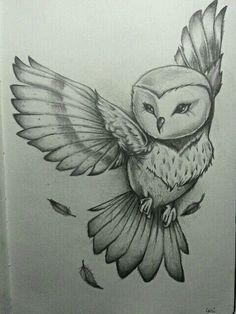 Tattoo Drawings, Owl Drawings, Drawings Of Flowers, Animal Drawings, Cute Drawings, Cool Pencil Drawings, Flying Bird Drawing, Drawing Birds, Painting & Drawing