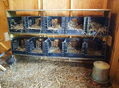 CHICKEN COOP nesting boxes from milk crates.  Easier to clean... than wooden nesting boxes.