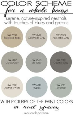 My paint plan for 2862