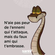 Avoir peur du faux ami qui t'embrasse Plus Image Citation, Quote Citation, Best Quotes, Love Quotes, Inspirational Quotes, Sassy Quotes, Fake Friends, Friends Family, French Quotes