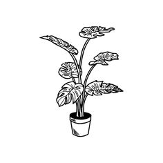 Potted Plant Art Print by Mattsartsucks - X-Small Plant Painting, Plant Drawing, Plant Art, Tattoo Bein, Arm Tattoo, Cute Tattoos, Small Tattoos, Tatoos, Small Potted Plants