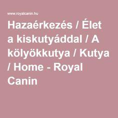 Hazaérkezés / Élet a kiskutyáddal / A kölyökkutya / Kutya / Home - Royal Canin