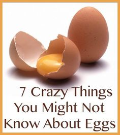 7 Crazy Things You Might Not Know About Eggs By PositiveMed-Team Edited By Stephanie Dawson [Last updated: December Eggs are oval in shape and contain many secrets There … Pet Chickens, Chickens Backyard, Raising Chickens, Growing Chicken Feed, Egg Benefits, Fruit Nutrition Facts, Chicken Breeds, Chicken Coops, Happy Kitchen