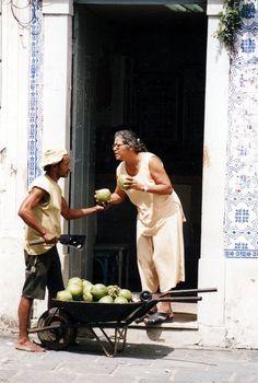 Coconut debates in Brazil